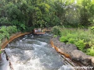 Kali River Rapids 3