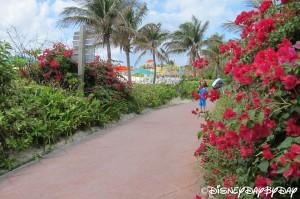 Castaway Cay 32