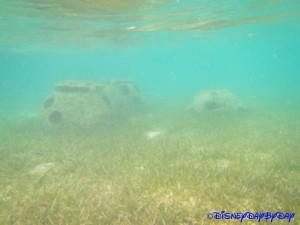 Castaway Cay Underwater 10