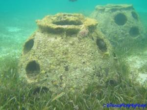 Castaway Cay Underwater 18