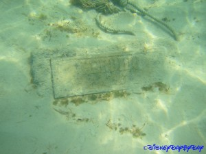 Castaway Cay Underwater 23