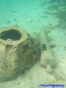 Castaway Cay Underwater 24