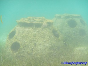 Castaway Cay Underwater 9