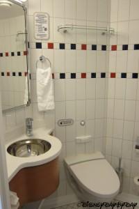 Disney Fantasy Toilet