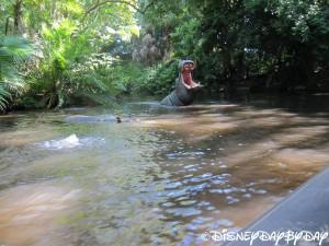 Jungle Cruise 10