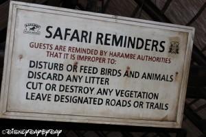 Kilimanjaro Safari 072013 2