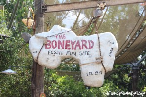 The Boneyard 072013 1