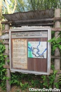 Animal Kingdom - Pangani Forest Exploration Trail 11