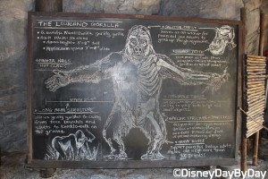 Animal Kingdom - Pangani Forest Exploration Trail 13