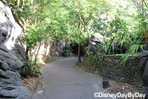 Animal Kingdom - Pangani Forest Exploration Trail 17