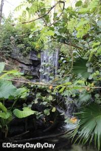 Animal Kingdom - Pangani Forest Exploration Trail 18