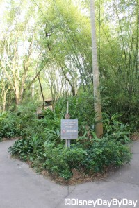 Animal Kingdom - Pangani Forest Exploration Trail 21