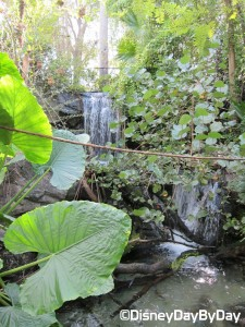 Animal Kingdom - Pangani Forest Exploration Trail 23.2