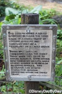 Animal Kingdom - Pangani Forest Exploration Trail 24