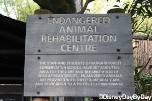 Animal Kingdom - Pangani Forest Exploration Trail 3