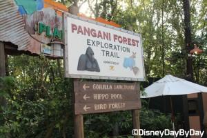 Animal Kingdom - Pangani Forest Exploration Trail 31
