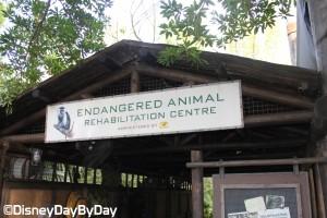 Animal Kingdom - Pangani Forest Exploration Trail 6