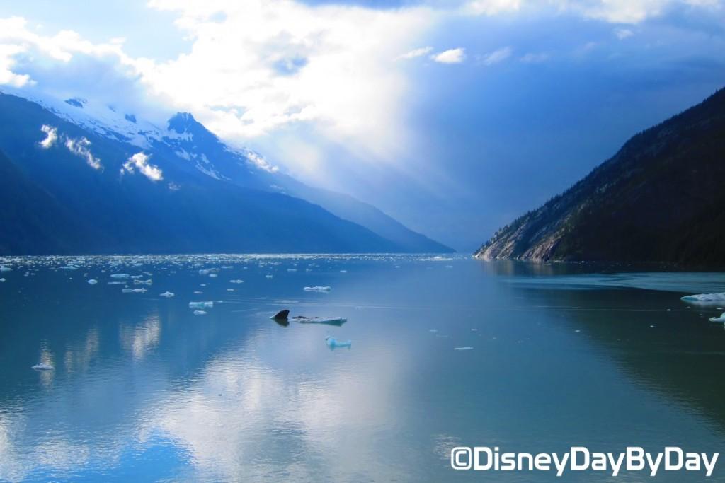 Disney Wonder - Alaska