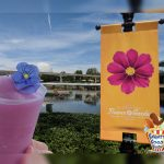 Violet Lemonade